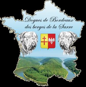 Elvage Berges de la Sarre, Grand-Est, France, Sarreguemines